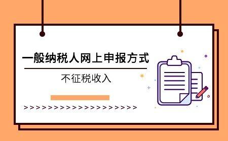 一般纳税人网上申报之不征税收入申报方式