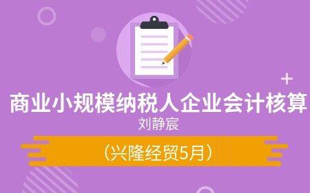 商业小规模纳税人企业会计核算(兴隆经贸5月)