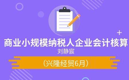 商业小规模纳税人企业会计核算(兴隆经贸6月)