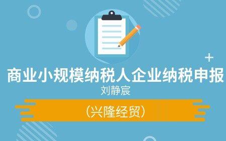 商业小规模纳税人企业纳税申报(兴隆经贸)