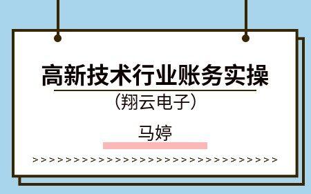 高新技術行業賬務實操(翔云電子)