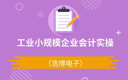 工業小規模企業會計實操(浩博電子)