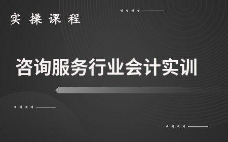 咨询服务行业会计实训