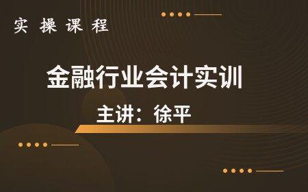 金融行业会计实训