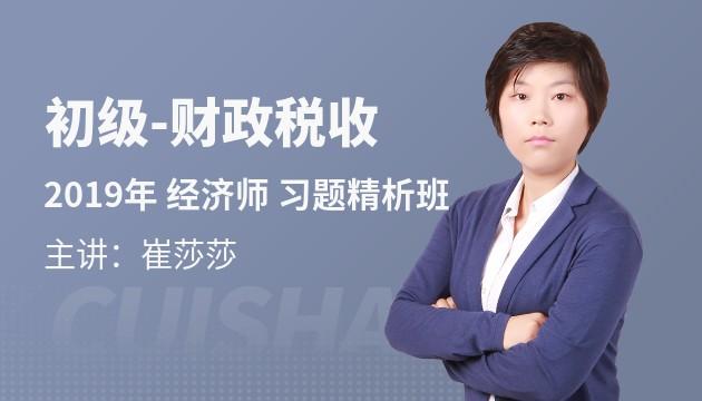 2019新大纲《财政税收专业知识与实务》习题精析班