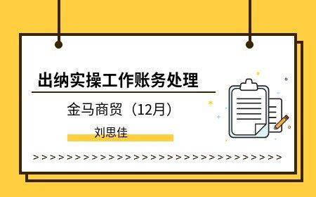 出纳实操工作账务处理(12月)