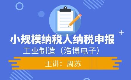 工业小规模企业纳税申报(浩博电子)