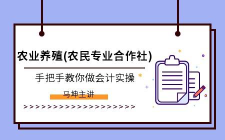 南京會計實操機構哪個品牌好?