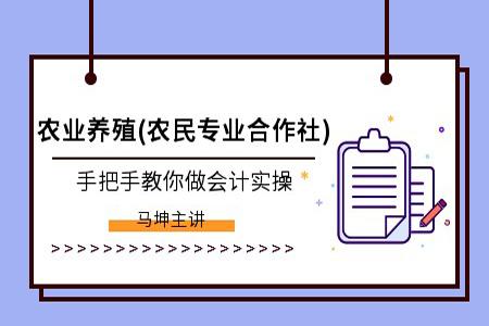 杭州會計實操輔導班,輔導班課程介紹