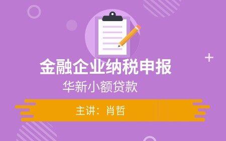 金融企业纳税申报(华新小额贷款)